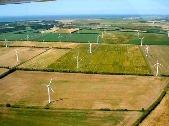 Vestas windmill farm